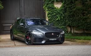 Обои ягуар, Jaguar, Sedan