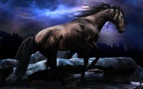 Картинка ручей, лошадь, цвет