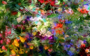 Картинка линии, цветы, узор, сад, клумба