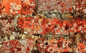 Картинка стена, кирпич, текстура