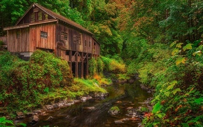 Картинка лес, река, мельница, Washington, штат Вашингтон, Woodland, Вудленд, Cedar Creek Grist Mill