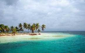 Картинка море, тропики, пальмы, берег, Panama