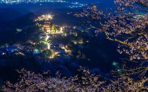 Обои горы, дома, панорама, Япония, огни, ночь, сакура, ветки, лес