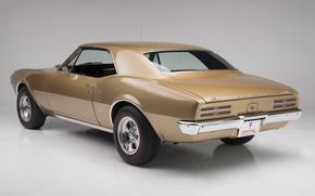 Картинка сзади, мускул кар, muscle car, 1967, pontiac, понтиак, firebird