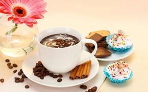 Картинка цветы, gerbera, cup, торт, cake, чашка, десерт, dessert, гербера, кофе, chocolate, coffee, еда, шоколад, flower