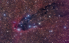 Обои космос, Скорпион, dark nebula, звездообразование, star formation, Scorpius, темная туманность