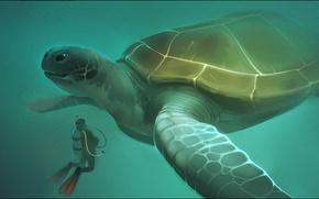 Картинка океан, водолаз, черепаха, Александра Хитрова, GaudiBuendia