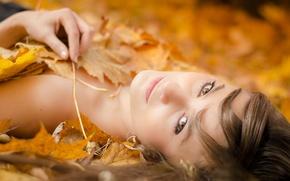 Картинка осень, листья, портрет, боке