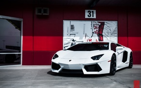 Картинка белый, Lamborghini, суперкар, Aventador, ламборгини, авентадор