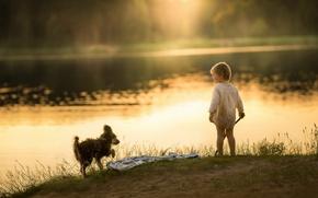 Картинка озеро, собака, мальчик, утро
