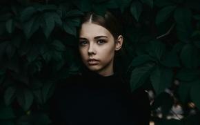 Картинка листья, девушка, боке, портретное фото