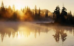 Картинка река, деревья, туман, природа, горы, утро