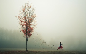 Картинка осень, листья, девушка, туман, дерево