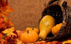Картинка осень, листья, корзина, тыквы, овощи