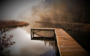 Картинка осень, вода, деревья, туман, тишина