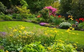 Картинка пейзаж, цветы, природа, клумба