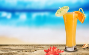 Картинка стакан, ракушка, коктейль, морская звезда, долька апельсина