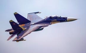 Картинка 2013, МАКС, Су-30 СМ