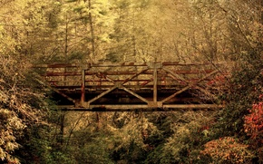 Обои Южная Каролина, мост, осень, лес, листья