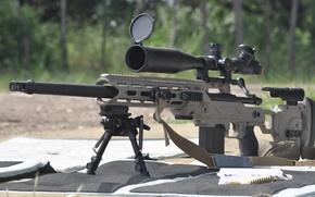 Картинка оружие, Drake Associates, Remington, Stalker 700, снайперское