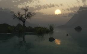 Обои солнце, закат, горы, озеро, камыши, дерево, сумерки