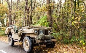 """Картинка войны, автомобиль, армейский, Jeep, повышенной, проходимости, мировой, Второй, времён, """"Виллис-МВ"""", Willys MB"""