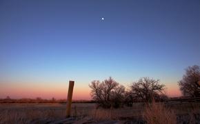 Картинка поле, небо, деревья, закат, оранжевый, розовый, луна, Вечер, синее