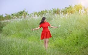 Картинка поле, лето, девушка, красное, платье, азиатка