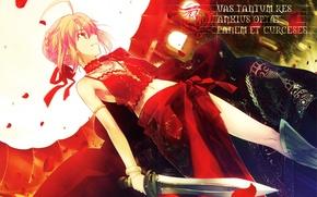 Обои takeuchi takashi, art, fate/extra, fate/stay night, saber