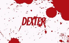 Обои dexter, кровь, декстер