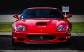 Картинка трава, красный, забор, Ferrari, red, grass, феррари, front, 550, maranello
