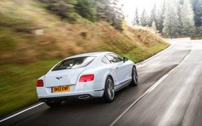 Картинка Bentley, Continental, Дорога, Белый, Лес, Машина, В Движении