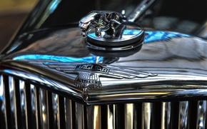 Картинка Jaguar, ягуар, эмблема, хром, шильдик