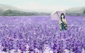 Обои поле, девушка, цветы, зонтик, корзина, зонт, арт, лаванда