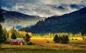 Картинка поле, лес, небо, облака, свет, горы, дом, ели