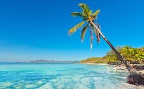 Обои песок, море, пляж, пальмы, берег, summer, beach, sea, sand, shore, paradise, palms, tropical
