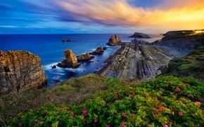 Картинка море, закат, цветы, скалы, побережье, Испания, Spain, Costa Quebrada, Бискайский залив, Cantabria, Кантабрия, Bay of …