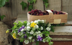 Обои ягоды, лукошко, шелковица, полевые цветы