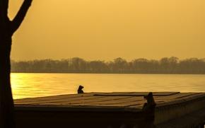 Картинка солнце, закат, желтый, китай, дворец, император