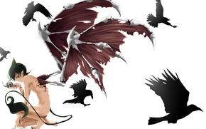 Картинка кровь, череп, крылья, аниме, демон, хвост, рога, парень, ворон, Синий экзорцист, ao no exorcist