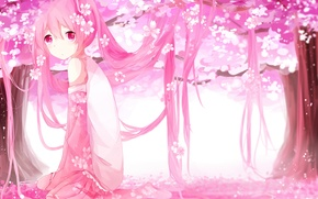 Картинка девушка, деревья, цветы, аниме, лепестки, сакура, арт, vocaloid, sakura miku