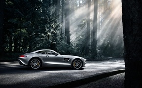 Обои mercedes-benz, amg, gt s, 2016, silver, color, sun, dark, forest, side