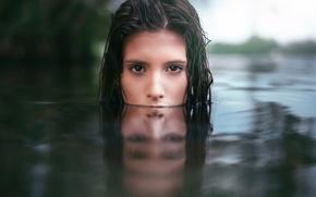Обои взгляд, отражение, в воде, Martin Kühn, Clara