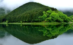 Картинка зелень, пейзаж, отражение, япония, гора, Fujinomiya, Lake Tanuki