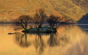 Обои гора, склон, озеро, островок, деревья