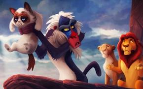 Картинка кошки, мультфильм, лев, король