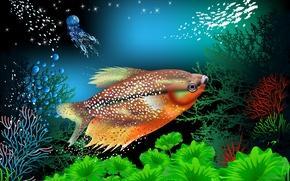 Картинка рыбы, кораллы, подводный мир