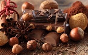 Обои анис, черный, десерт, сладкое, дольки, молочный, орехи, бадьян, шоколад, какао, корица, стружка