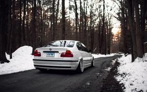 Обои зима, деревья, бмв, 325i, белая, BMW, лес, E46