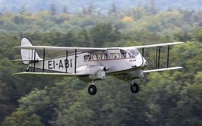 Картинка Великобритания, первый, авиалайнер, De Havilland, D.H.84 Drago, для низкотарифных линий